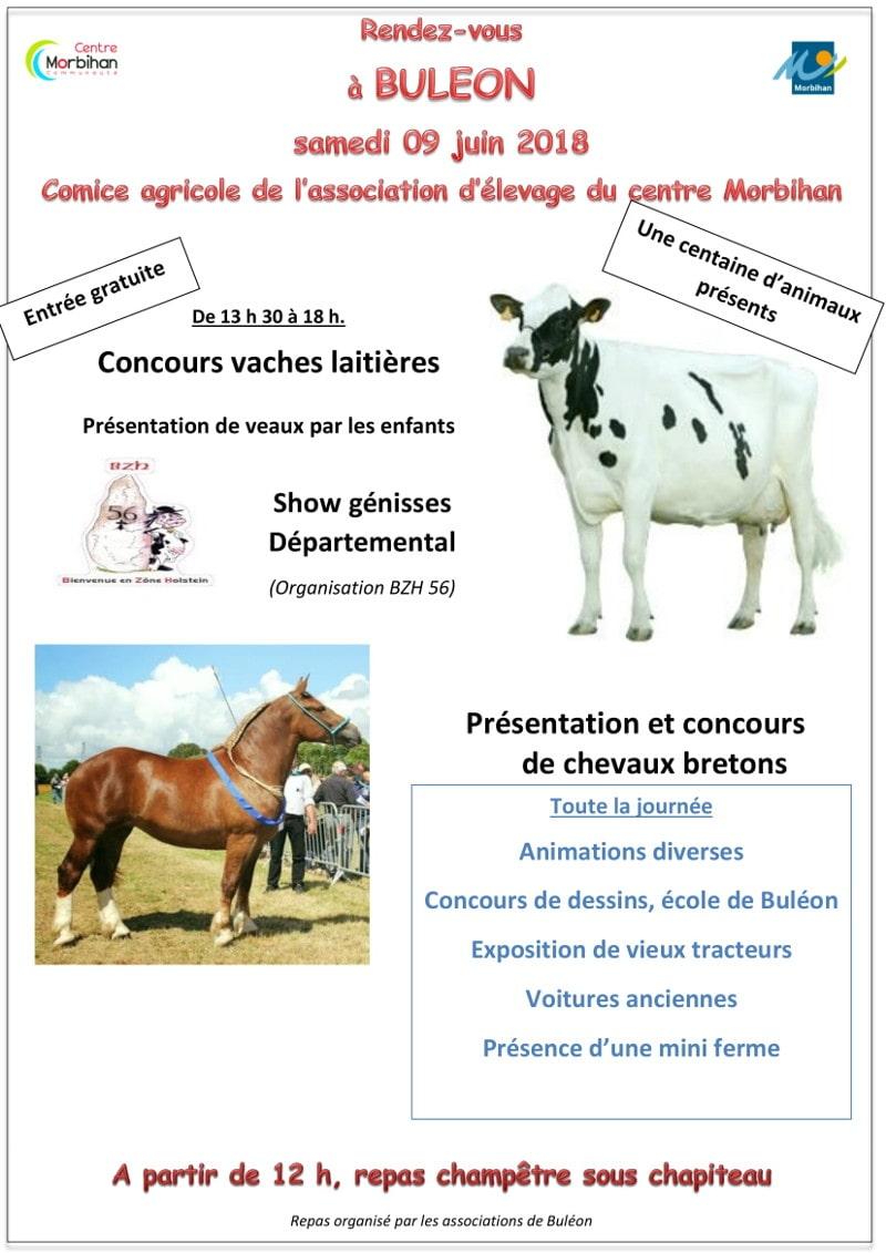 Comice agricole de l'association d'élevage du centre Morbihan